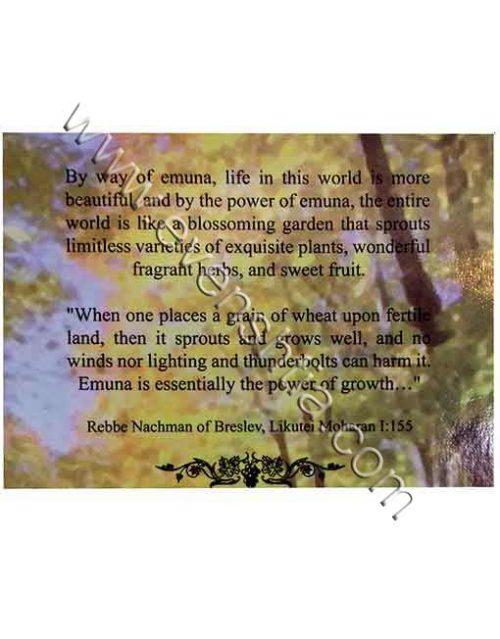 The garden of Emuna SHalom Arush English breslev books
