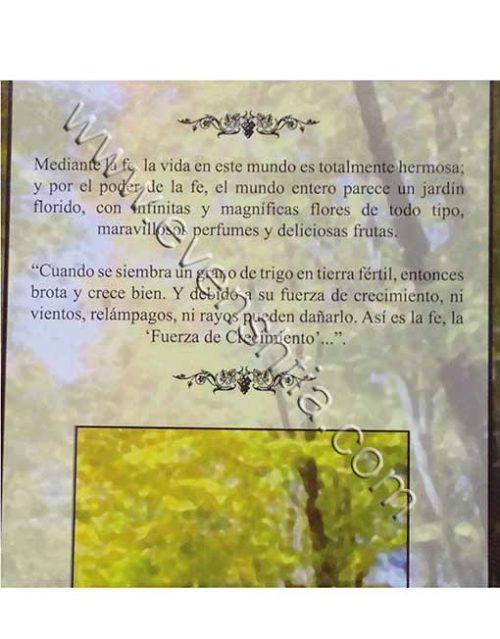 En el jardin de la fe La Guía Práctica Para la Vida  El Rabino Shalom Arush Breslov Libros Españoles,