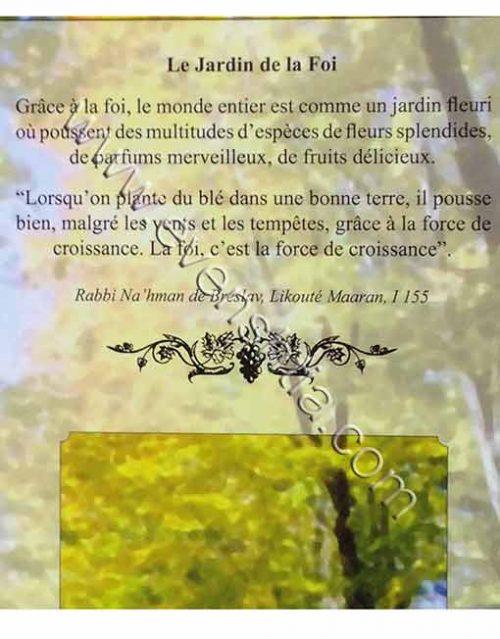 Le jardin de la foi | Rav Shalom Arouch - Guide pratique de la vie - Breslov Livres Français