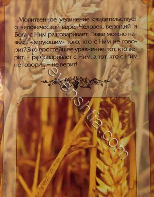 На опушке леса בשי יער ספר ברסלב ברוסית - Бреслев Русские книги